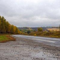 Бродит осень, душа бесприютная... :: Наталья Костенко