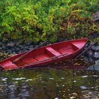 Затонувшая лодка :: Марина Богданова