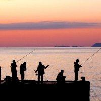 Вечерняя рыбалка :: Tanja Gerster