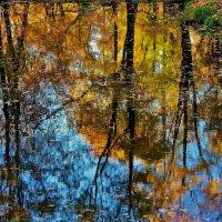 Отражения милой осени... :: Sergey Gordoff