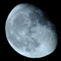 Магическая луна :: Волк-ПРИЗРАК Фомин Виталий
