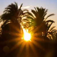 Солнышко лучистое :: Ефим Журбин