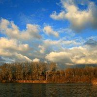 Растут из речки облака, плывут, скрываются за лесом... :: Евгений Юрков