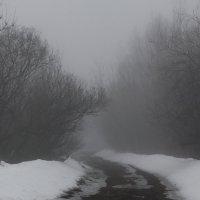 Fog :: Денис