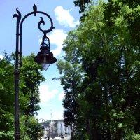 Парк, деревья :: Любовь