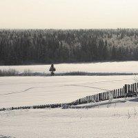 Зима в Лойно... :: Александр Широнин