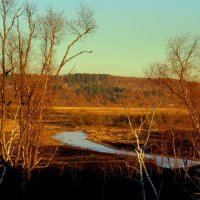 Озерцо замёрзло :: Милла Корн