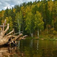 Река :: Владислав Левашов