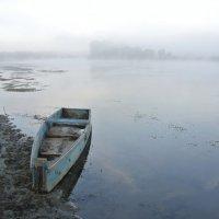 в тумане :: Владимир Коваленко