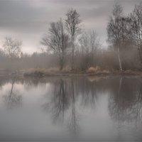 Озеро в тумане :: Дмитрий Б.