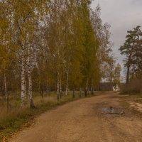 Осенние дороги :: Александра