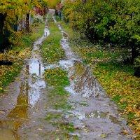 Поздняя осень на даче :: Viktor Eremenko
