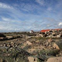 Каменный остров :: liudmila drake