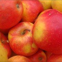Румяные яблочки :: Нина Корешкова