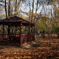 беседка в парке :: Александр Корчемный