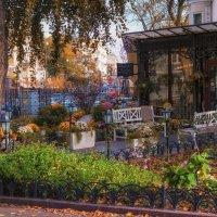 Ноябрь в Одессе. :: Вахтанг Хантадзе