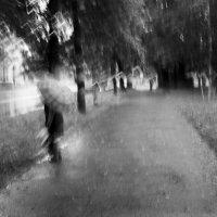 Дождит... :: Валерий Молоток