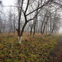 img_0998 :: Сергей Козлов