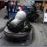 Скульптура сайменской нерпы :: Вера