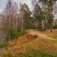 Поздняя осень семнадцатого года 3 :: Андрей Дворников