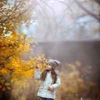 )))))Осень :: ЕВГЕНИЯ