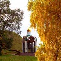 осень золотая :: Наталья Сазонова