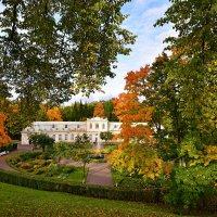 Осень в Петергофе :: Витас Бенета
