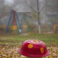 осень - грибная пора :: Дмитрий Барабанщиков