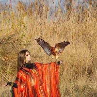 Охота :: Наталья Ремез