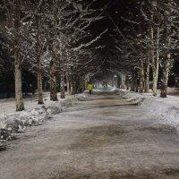 аллея, вечер, зима... :: Alexandr Staroverov