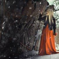 Зима идет к нам... :: Евгений Ромащенко