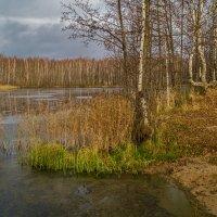Поздняя осень семнадцатого года 4 :: Андрей Дворников