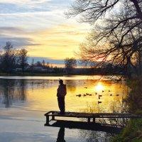 Вечерняя рыбалка :: Oleg S
