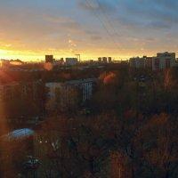 Ноябрьский закат :: Дмитрий Вдовин