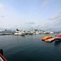 Яхты в порту :: Виктор Коршунов