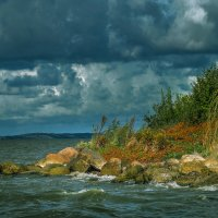Куршский залив.. :: juriy luskin