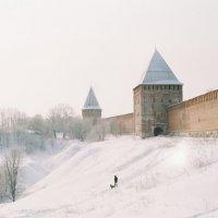 Смоленская крепостная стена :: Aleksandr Ivanov67 Иванов