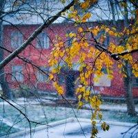 Первый снег :: Екатерина Фрайер