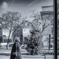 За окном... :: Юлия Копыткина