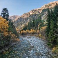 Осень в Тебердинском заповеднике... :: Аnatoly Gaponenko