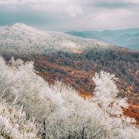 Первый снег :: Александр Чупин
