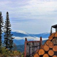 Зима уже не за горами :: Сергей Чиняев