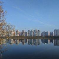 пруд у нового города :: Алексей Меринов
