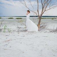 Свадьба в морсокм  стиле :: Нина Потапова