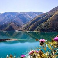"""Озеро """"Кезеной-Ам"""" :: Диана"""