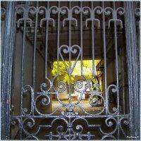 Заглянем в Одесский дворик... :: Любовь К.