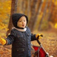 Чудо осень :: Александра Михайлова
