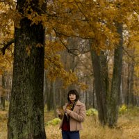 Осенний лес :: YGulnara Юнусова