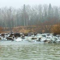 Бежит река... :: Владимир Деньгуб