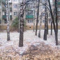 Скоро зима.. :: Елена Семигина
